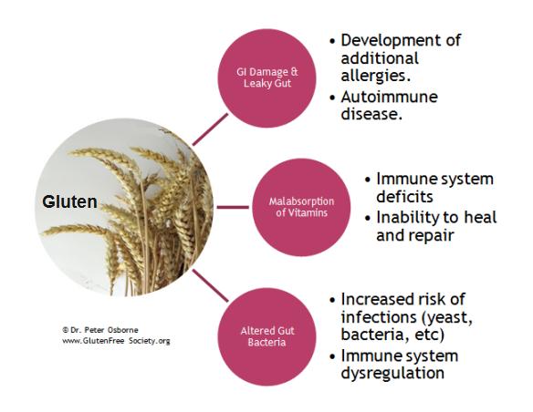 immune-system-and-gluten1