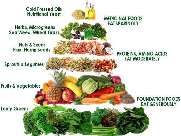 Raw diet food pyramid